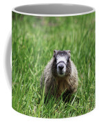 Marmot Pup Coffee Mug