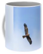 Marsh Harrier Coffee Mug