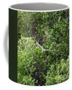 Marsh Hawk 3 Coffee Mug