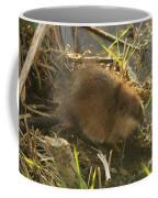 Marsh Life Coffee Mug
