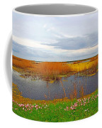 Marsh Spring Coffee Mug