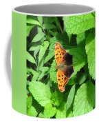 Maryland Eastern Comma Coffee Mug