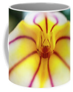 Masdevallia Orchid Coffee Mug