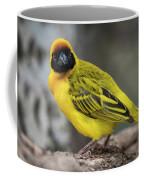 Masked Weaver Bird Facing Camera On Log Coffee Mug
