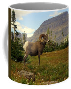 Master Of His Domain Coffee Mug