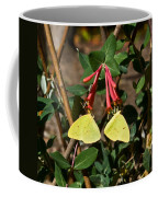 Matched Pair Of Sulfur Butterflies Coffee Mug