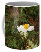 Matilija Poppy I Coffee Mug