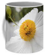 Matillija Poppy Coffee Mug