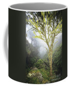 Maui Moss Tree Coffee Mug