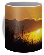 Maui Sunset Coffee Mug