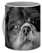 Max - A Shih Tzu Portrait Coffee Mug