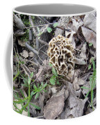 May Morel Mushroom Coffee Mug