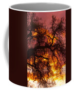 May One Sunset Coffee Mug