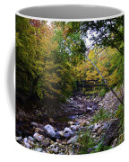 Mcarthur Bridge Over The Roaring Branch Coffee Mug