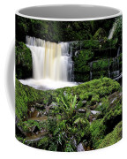 Mclean Falls In Southland New Zealand Coffee Mug