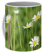 Meadow Detail White Wild Flowers Coffee Mug
