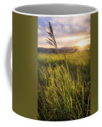 Meadow Light Coffee Mug by Chad Dutson