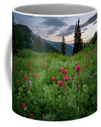 Meadow Of Wildflowers In The Wasatch Coffee Mug by James Udall
