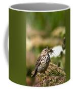 Meadow Pipit With Food Coffee Mug