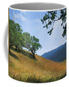 Meadow View Summer Coffee Mug