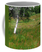 Meadow With Birch Trees Coffee Mug