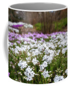Meadow With Flowers At Botanic Garden In The Blue Mountains Coffee Mug