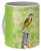 Meadowlark 7 Coffee Mug