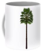 Mediterranean Fan Palm Tree Coffee Mug
