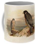 Mediterranean Peregrine By Thorburn Coffee Mug