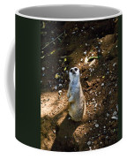 Meerkat     Say What Coffee Mug