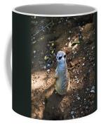 Meerkat Responding Coffee Mug