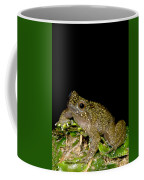 Mehu�n Green Frog Coffee Mug