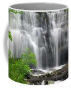 Meigs Falls 2 Coffee Mug