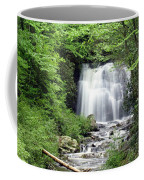 Meigs Falls Coffee Mug