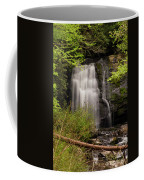 Meigs Falls Two Coffee Mug