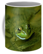 Mellow Frog Coffee Mug