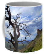 Mesa Verde Mood Coffee Mug