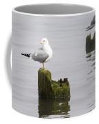 Mew Gull On A Piling Coffee Mug