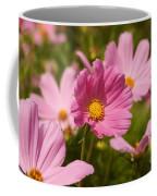 Mexican Aster Flowers 2 Coffee Mug