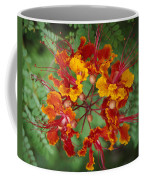 Mexican Bird Of Paradise Coffee Mug