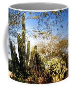 Mexican Country Road Coffee Mug