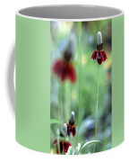Mexican Hat Flower Coffee Mug