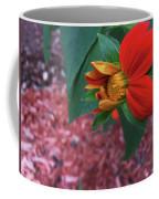 Mexican Sunflower In Mid Bloom Coffee Mug