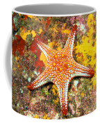 Mexico, Gulf Sea Star Coffee Mug