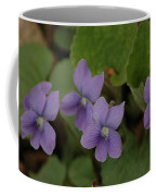 Michigan Purple Spring Flowers Coffee Mug