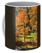 Middle Falls Viewpoint In Letchworth State Park Coffee Mug