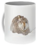 Miffed Mountain Hare Coffee Mug