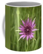 Milkweed Flower Coffee Mug