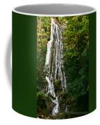 Mingo Falls - Gsmnp Coffee Mug