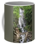 Mingo Falls In North Carolina Coffee Mug